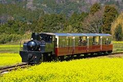 春の里山トロッコ列車