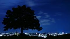 夜中の公園から…