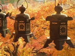 奈良県 談山神社の紅葉
