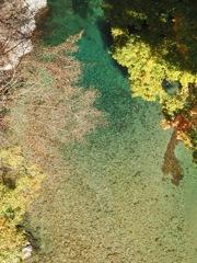 付知峡 綺麗な川と紅葉