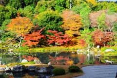 fall in fall