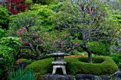 鎌倉・長谷寺の庭園