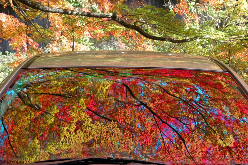 蓬莱山 ② 窓に映る紅葉