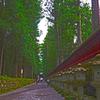 日光ぶらぶら (15) 二荒山神社への道