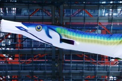 秋刀魚のぼり
