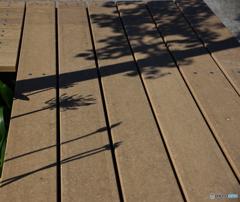 影が有るベンチ