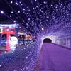 敦賀港イルミネーション「ミライエ」2020-10