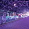 敦賀港イルミネーション「ミライエ」2020-9
