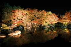 仕事は休業中、紅葉は播州、好古園のライトアップ 5