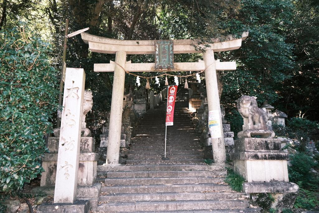 太郎坊宮、阿賀神社にて3