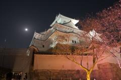 夜の姫路城2