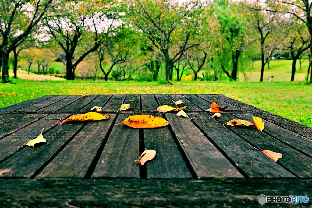 秋せまりくる
