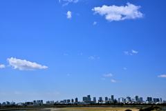 東京湾眺望・春 (2)