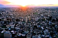 都会の落日