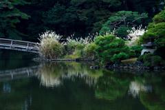 日本庭園・秋