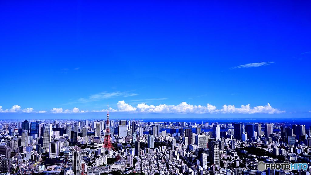 夏空・東京タワーのある風景(3)