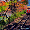 秋のわたらせ渓谷