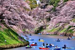 東京ど真ん中のお花見スポット