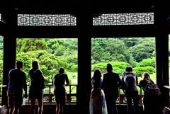 日本庭園を望む