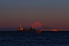 パール富士(館山) 202002093