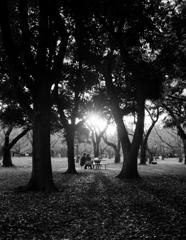【公園の人間模様】・二人の大事な時間・・代々木公園にて!