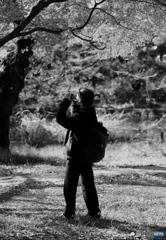 【公園の人間模様】・秋色を楽しむ・・女性カメラマン!