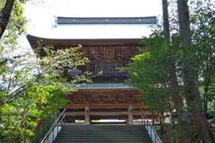 新緑の先に見える円覚寺三門(山門)~鎌倉散歩