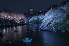 夜の千鳥ヶ淵,花もボートも大賑わい