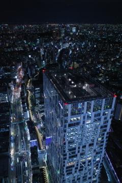 登ってみました渋谷スクランブルスクエア