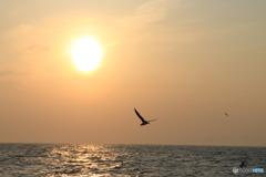 江ノ島の夕陽