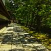 木陰の石畳