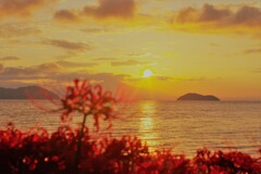湖西の夜明け