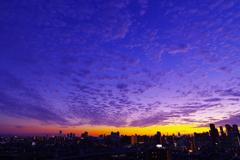秋雲−夕景−