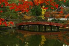 高野山 秋景色