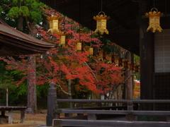 壇上伽藍の秋