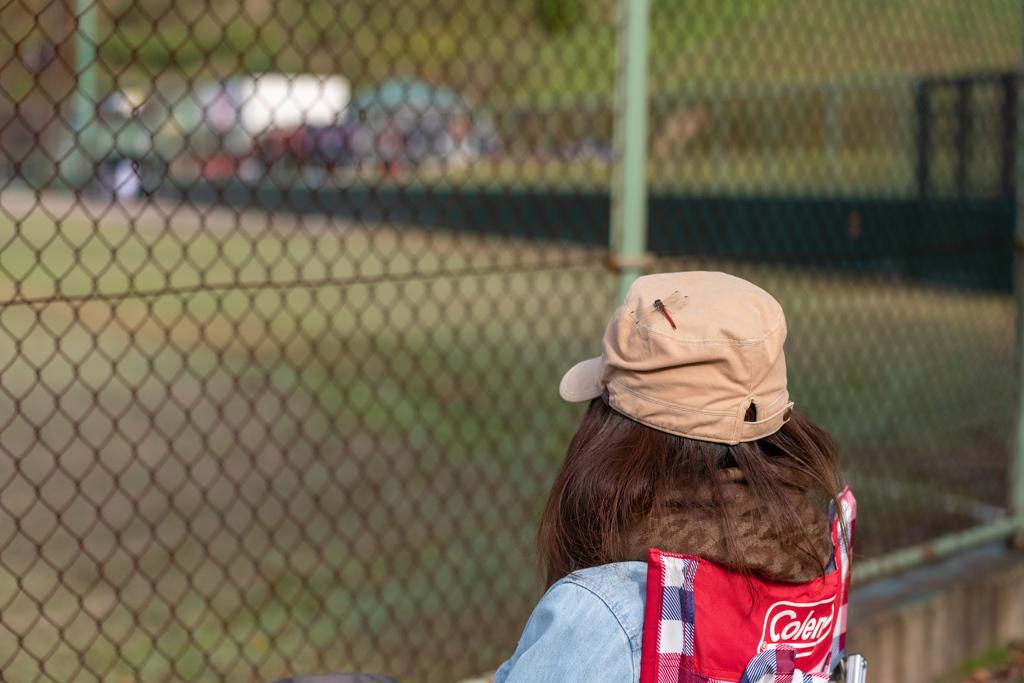 赤とんぼと野球観戦