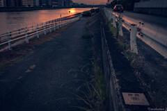 河を見て夕暮を知る