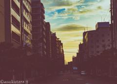 孟秋の黄昏