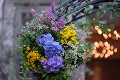 紫陽花のハンギング