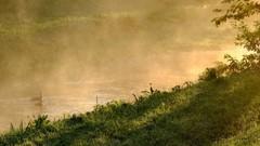 川霧のある風景