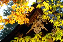 紅葉の中の御霊屋