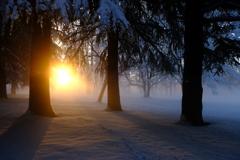 冬の日の朝