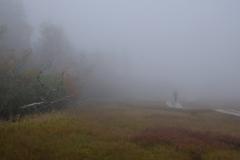 濃霧の栂池