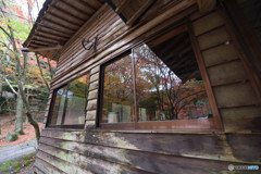 仁比山神社の秋⑫