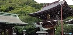 宮地嶽神社 門
