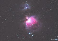 オリオン座の大星雲 2020年 1枚もの