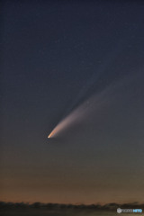 ネオワイズ彗星 再処理 (7枚コンポ)