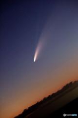 懲りない ネオワイズ彗星斜め構図 (3枚コンポ)