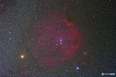 エンゼルフィッシュ星雲とベテルギウス