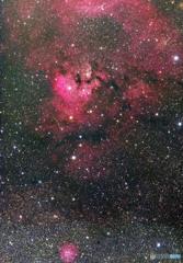 NGC 7822 合成